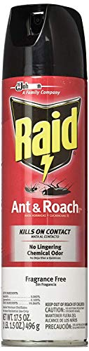 Raid Ant and Roach Killer, Fragrance Free, 17.5 OZ (Pack -...