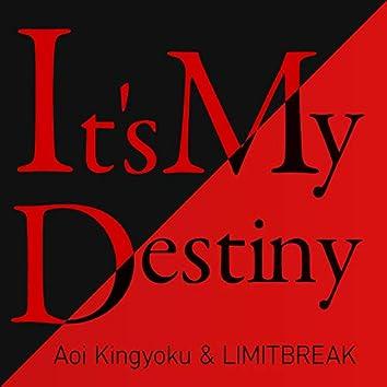 It's My Destiny