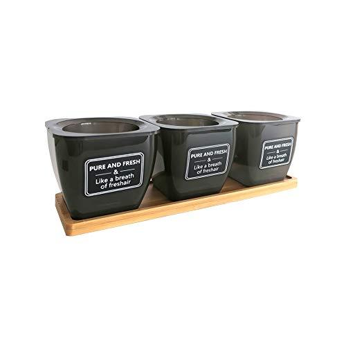 3-teilig Kräutertopf, Kräutertopf mit Bewässerungssystem, Selbstbewässerung Gourmet Kräutertopf, Pflanztöpfe für Kräuter zum Anpflanzen Eigener Kräuter zum Kochen
