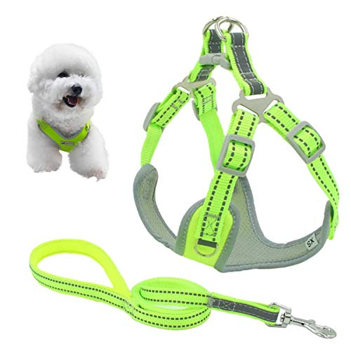 A.FATI Dog Harness, Reflective No Pull Dog Harness and Leash Set with Buckle Clip, Dog Harness Vest for Training Walking, Green/Red,Small/Medium/Large