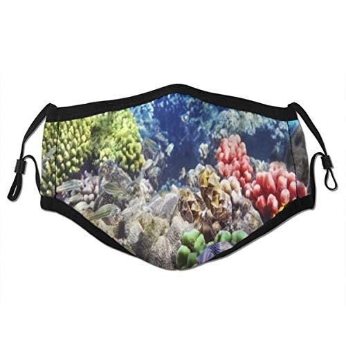 KASABULL Lot Hurghada Riff Korallenfisch Rot Ägypten Tiere Tierwelt Natur Ozean Leben Aquarium Hawaii Unter Wasser wiederverwendbarer Mund Warmes winddichtes Baumwollgesicht
