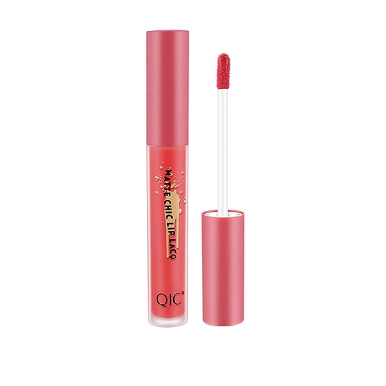 支援する余計なパイル1ピース口紅防水長続きがするつや消し口紅化粧品美容メイク