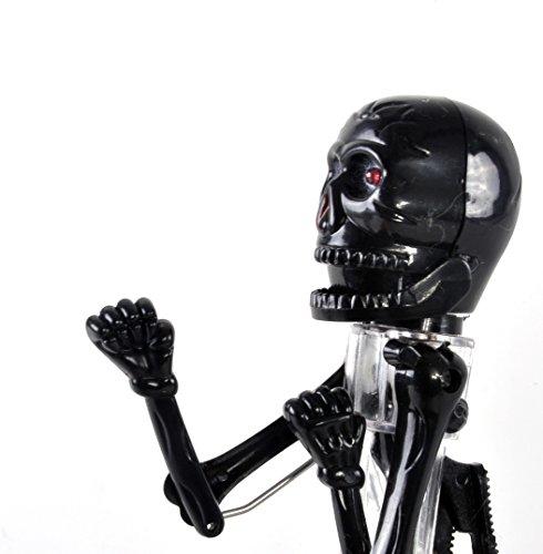 Tobar 22013 Squelette Boxe Stylo Mixte