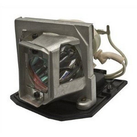 Optoma TX542-3D Projector Cage Assembly with Original Projector Bulb Inside
