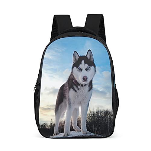 Husky - Mochila escolar para adolescentes y niños, ligera para mujeres, bolsa de libros, mochila para niños, mochila para viajes escolares, Gris brillante., Talla única,
