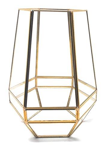 Ultra 18x18x23cm Gold Clear Glass Terrarium Planters Geometrische Form Für die Verlauten Einzigartiges Zentrum oder Windowsills für Luftanlagen Fern Moss Succulents Indoor Garden