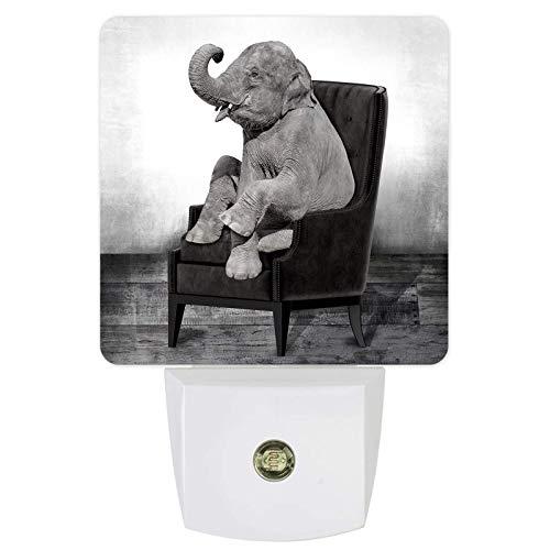 Luces De Noche Sensor Automático Silla De Elefante Sofá Enchufable Luces De Noche Led De Anochecer A Amanecer Para Sala De Estar Dormitorio