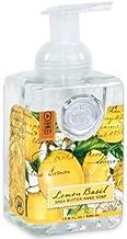 Michel Design Works Foaming Hand Soap, 17.80-Fluid Ounce, Lemon Basil (Lemon Basil, 1-pack)