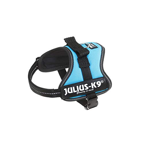 Julius-K9 Powerharness, Mini-Mini, Aquamarine