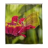 CPYang Duschvorhänge Zinnia Blume Schmetterling Wasserdicht Schimmelresistent Badvorhang Badezimmer Home Decor 168 x 182 cm mit 12 Haken