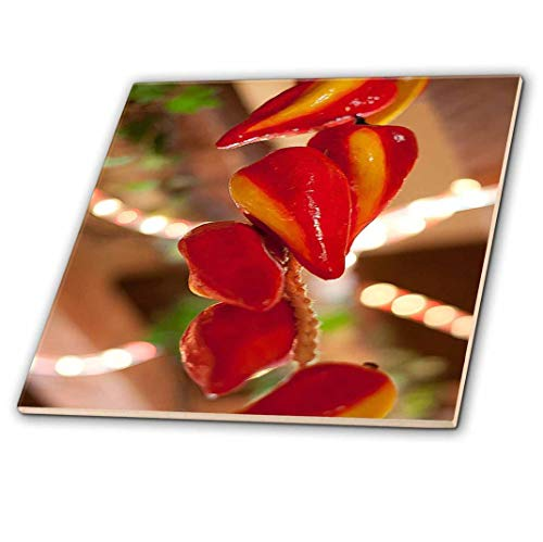 3dRose ct_52089_2 Ceramic Red Hot Chili Peppers Strung on String and Hanging on from a Ceiling in a Mexican Restaurant-Ceramic Tile, 6-Inch