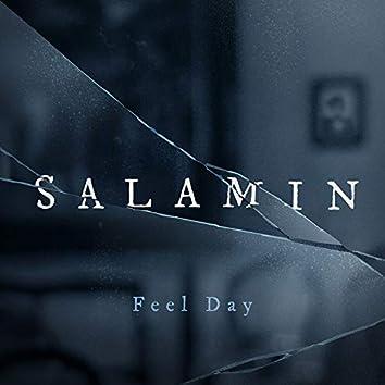 Salamin