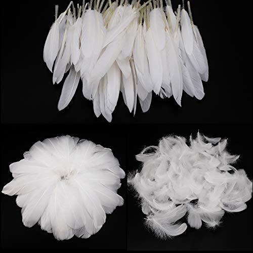 Mwoot White Feathers Plumas de Ganso, 250pcs Blanco Natural Plumas de Gallo Manualidades Decoración para Disfraces Hats, Hogar Bricolaje, Ropa Casa Fiesta (accesorio de disfraz)
