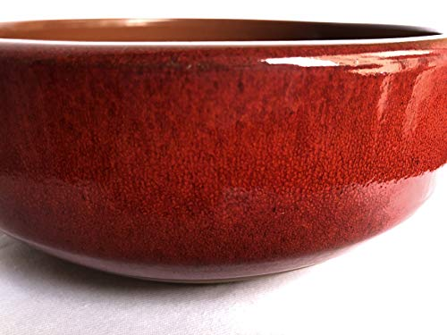 スペイン製耐熱陶器 PAELLA パエリア 19cm カラー:赤