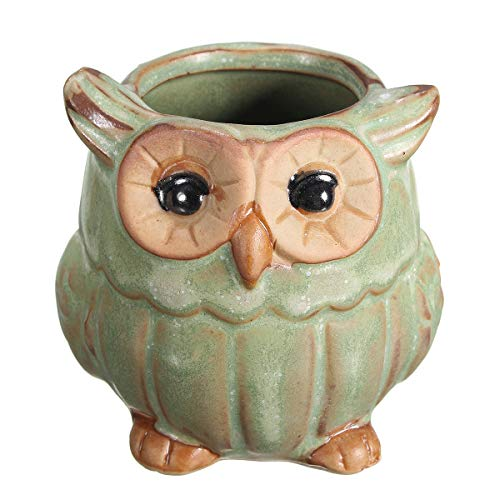 Bureze Mini pot de fleurs en céramique en forme de hibou pour décoration de jardin