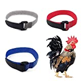 3 Pcs Upgrade Anti Crow Rooster Collar, No Crow Neck Belt for Roosters Cockerel Velcro Nylon, Anti Noise Neck Belt to Keep Roosters Quiet (Blue, Red, Gray)