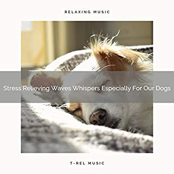 Stress Relieving Waves Whispers Especially For Our Dogs