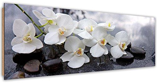 Feeby. Tableau Déco, Décoration Murale, Image imprimée, Deco Panel, Panoramique, 118x40 cm, ORCHIDÉE, Zen, Blanc