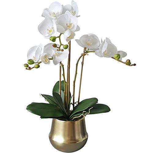 FOTGL Orquídea Artificial Bonsai con jarrón Dorado, Faux Phalaenopsis Plantas orquídeas Flores Arreglos Florales para Mesa de Centro de Mesa de la Sala de Estar decoración del hogar