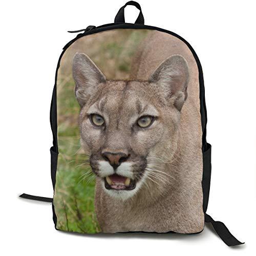 Mochila Escolar Cougar Face Teeth para niños, Estudiantes, Adultos