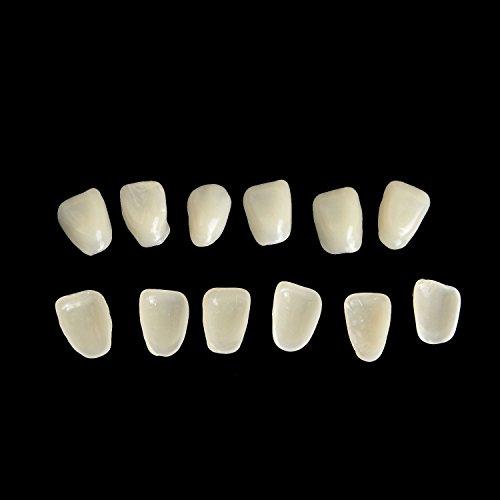 """Azdent® Dünne Verblendschalen (""""Veneers"""") aus Kunstharz zur Zahnaufhellung der oberen Vorderzähne, Farbe A2, 75Stück/Packung"""