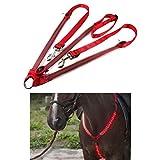 Piaoliangxue Collier de Plastron de Cheval LED réglable - Harnais de Cheval LED Haute visibilité - Outils d'équitation d'équipement de sécurité équestre - pour l'équitation de Nuit (03)