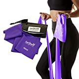 Exercise Bands with Carry Pouch and Door Anchor for Resistance Bands, Latex-Free Stretch Bands, Includes Home Workout App and Ebook, Purple, Heavy - Super Exercise Band