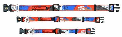X-TRM collier, L–XL: 48–66 cm/25 mm,orange/bleu Chien - entièrement réglable
