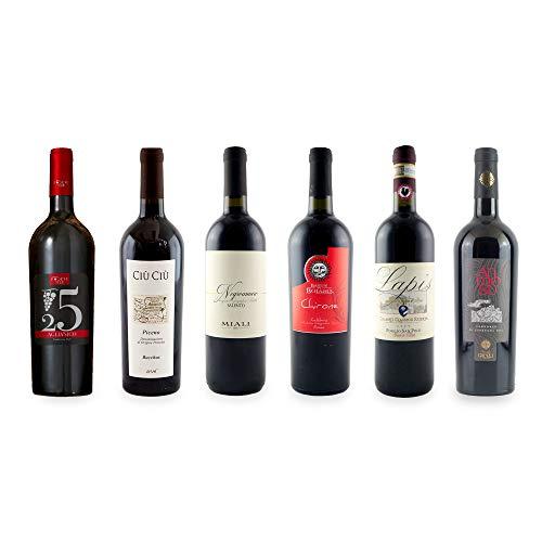 Confezione regalo Natale Vini Rossi 6 bottiglie : Aglianico IGP,Bacchus Rosso Piceno DOP, Vino Negroamaro IGP, Chirone IGT 2016, Chianti Classico DOCG 2011 e Animosu Cannonau Di Sardegna DOC 2015
