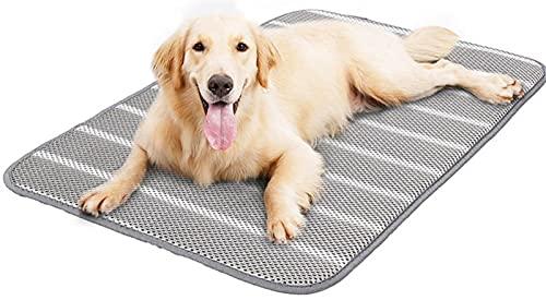 DHGTEP Cama De Enfriamiento para Perros Cama para Perros Pequeños Medianos Grandes Cojín De Pañales Reutilizables Accesorios para Proteger Los Huesos (Color : Gray, Size : 52x40CM)