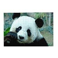 300ピース パンダ ジグソーパズル 木製 DIY 大人 子供向け ブレインティーザー ゲーム 動物 風景 壁飾り 装飾画 人気 ギフト プレゼント ストレス解消