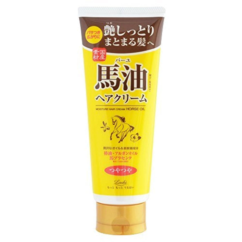 用量研磨剤巨人ロッシモイストエイド オイルヘアクリームBA × 6個セット