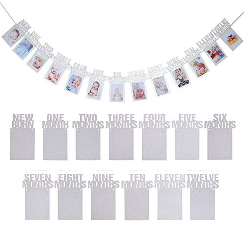 ANGEL Q HOUSE Newborn 1st Birthday Baby Photo Banner Growth Record 1-12 Months, Monthly Milestone Photo Bunting Wreath, First Birthday Party Decoration (Silver)