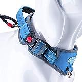 ThinkPet Heavy-Duty Hundehalsband Mit Griff, Verstellbares Reflektierendes Halsband, Gepolstertes Sporthalsband Für Training, Laufen, Gehen, Nylon,Blau,Klein