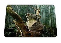 26cmx21cm マウスパッド (コアラの枝座) パターンカスタムの マウスパッド
