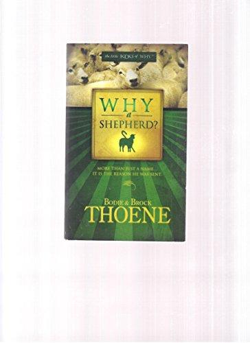 Why a Shepherd?
