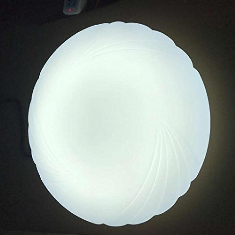 Madaye Modern einfach LED Decke Acryl rund Wohnzimmer Schlafzimmer Studie Balkon Lampe 20cm 12