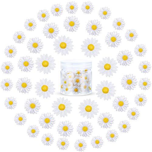 50 Stücke Mini Harz Daisy Gänse Blümchen Blume Mini Dekorierte Gänseblümchen Gänseblümchen Blume Harz Charms mit Aufbewahrungsbox für DIY Handwerk Party Haus Dekoration, 3 Größen