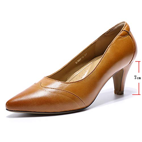 Mona flying Women's Leather Pumps Dress Shoes High Heels Med Heel Pointed Toe Formal Office Shoes...