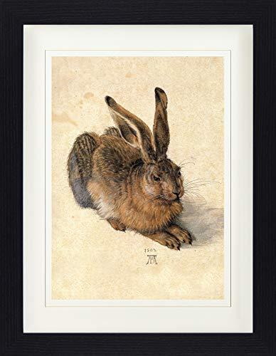 1art1 Albrecht Dürer - Junger Feldhase, 1502 Gerahmtes Bild Mit Edlem Passepartout | Wand-Bilder | Kunstdruck Poster Im Bilderrahmen 40 x 30 cm