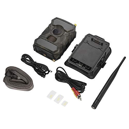 Trail Camera 1080P Outdoor Wildlife Wasserdichte Infrarot-Nachtsicht-Jagdvideotrail-Wildkamera mit Camouflage-Aussehen und für die Jagd und Tierbeobachtung