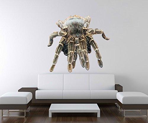 3D Wandtattoo Spinne Tarantel Tier Netz giftig Wand Aufkleber Deko Wandbild Wandsticker A3D70, Motiv Breite:60cm
