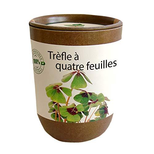 Feel Green Ecocan, Trèfle À Quatre Feuilles, Idée Cadeau (1