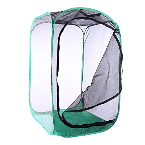 Poxl Insectes et Papillon Cage Bord Noir Vert Net Portable Cage à Insectes Mesh Habitat Terrarium Pop-up