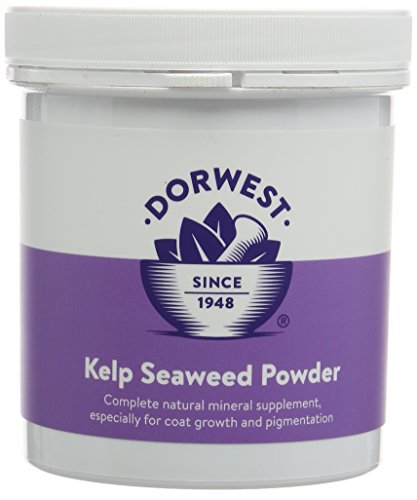 DORWEST HERBS Kelp and Seaweed Powder for Dogs and Cats 250g