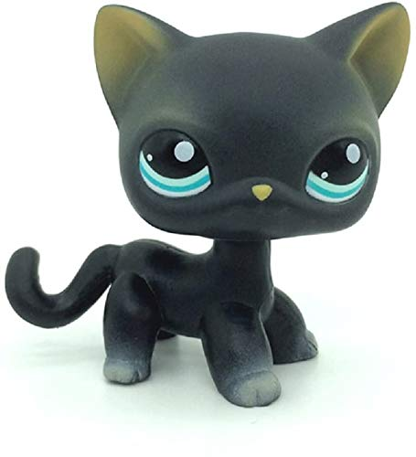 Greneric Littlest Pet Shop, LPS Toy Sparkle,Action Figures Kids Toy Gift,Black Short Hair Siamese Cat Blue Eyes Kitten Mini Pet Shop Toys