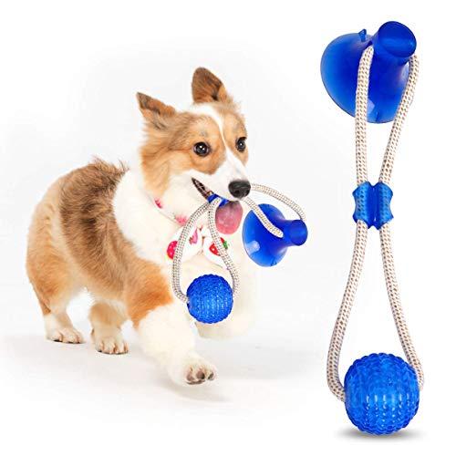 GHONLZIN Multifunction Pet Molar Bite Toy, Juguete Mordedor Mascota, Juguete Multifuncional para mordedura de Molar, Mordedura de Perro del Entrenamiento con Ventosa (Blue)