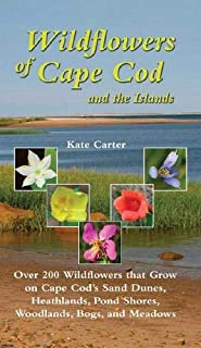 Wildflowers of Cape Cod & the Islands: 206 Wildflowers that Grow on Cape Cod's Sand Dunes, Heathlands, Pond Shores, Woodlands, Bogs and Meadows