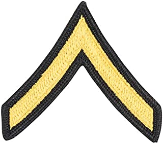 US Army Private E 2 Gold On Blue Cloth Pair Dress Blue Rank Multicolored