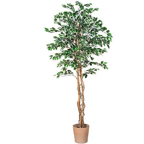 PLANTASIA® Ficus-Baum, Echtholzstamm, Kunstbaum, Kunstpflanze - 190 cm, Schadstoffgeprüft
